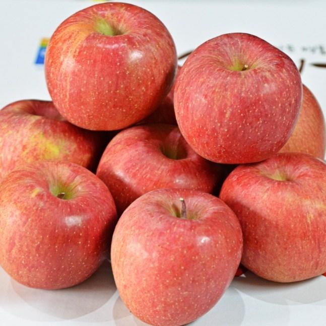 [방씨아들] 해발고도 450m 주왕산 청송 꿀사과 홍로사과 사과선물세트, 1박스, 미5kg(19과내외)