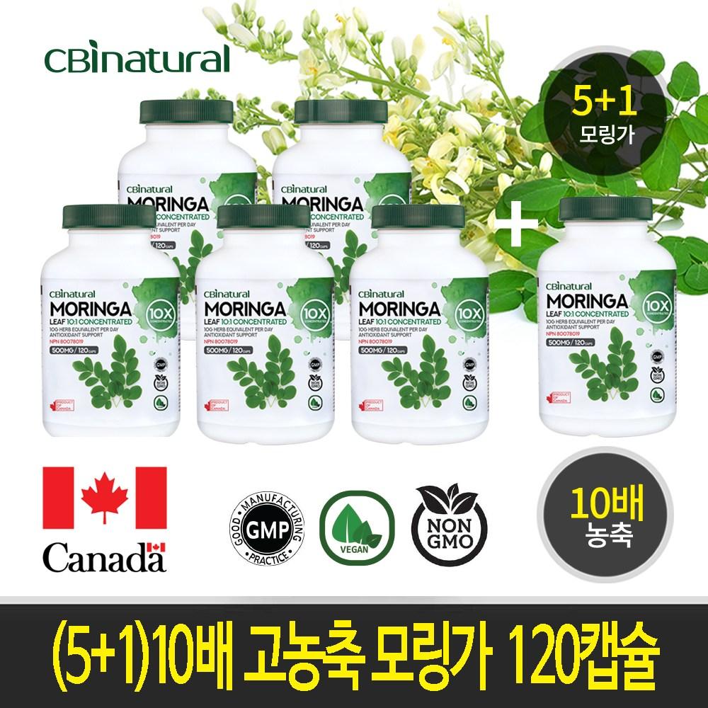 CBI Nutural (5+1)10배 고농축 히말라야 모링가 120캡슐 캐나다 생산 직발송, 6개, 120