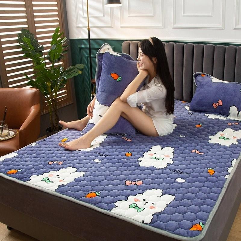 토퍼 템퍼 매트리스 침구 기타 겨울 기모 쿠션 학생 기숙사 싱글 담요 침대, AO_1.0 x 2m