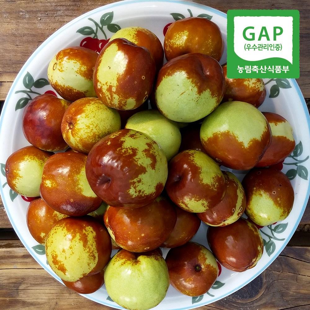 [산지직송]GAP 사과대추 대 특 왕특, 1박스, 1kg 왕특(40mm이상)
