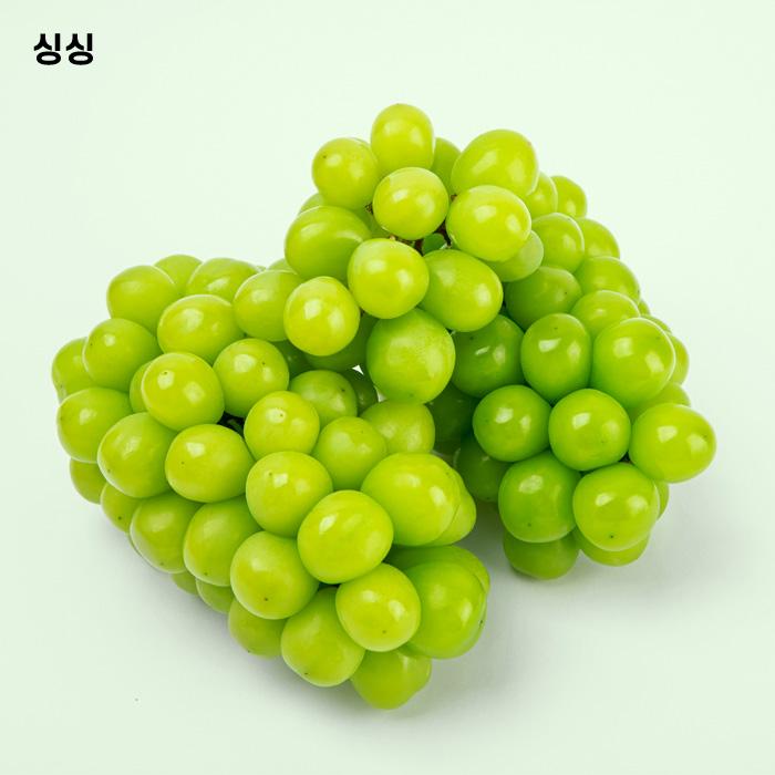싱싱 달콤한 샤인머스켓, 샤인머스켓 1.5kg [2-3수]