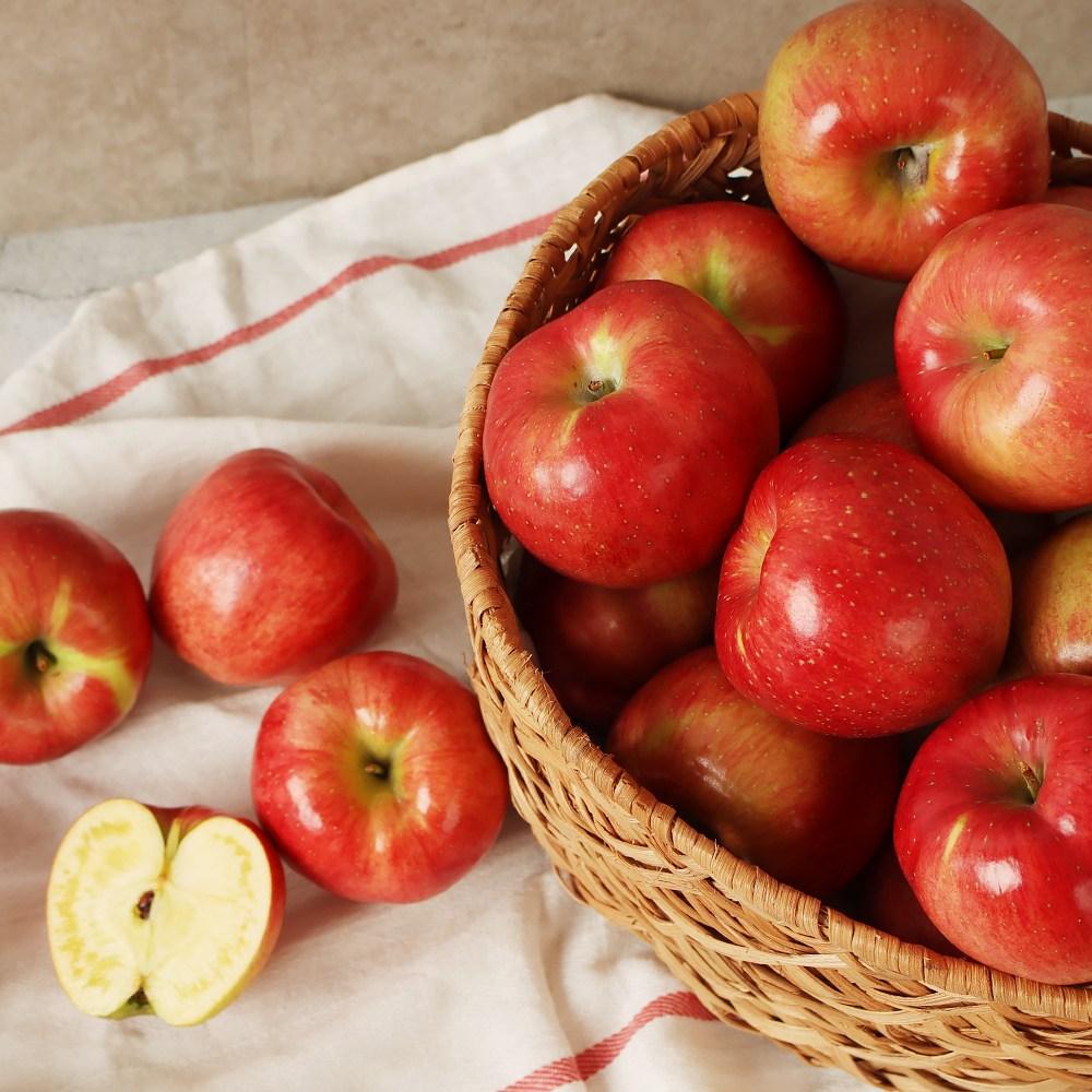 마녀바스켓 경북 햇 빨간사과 가정용, 1box, 5kg꼬마(28-35과 내)