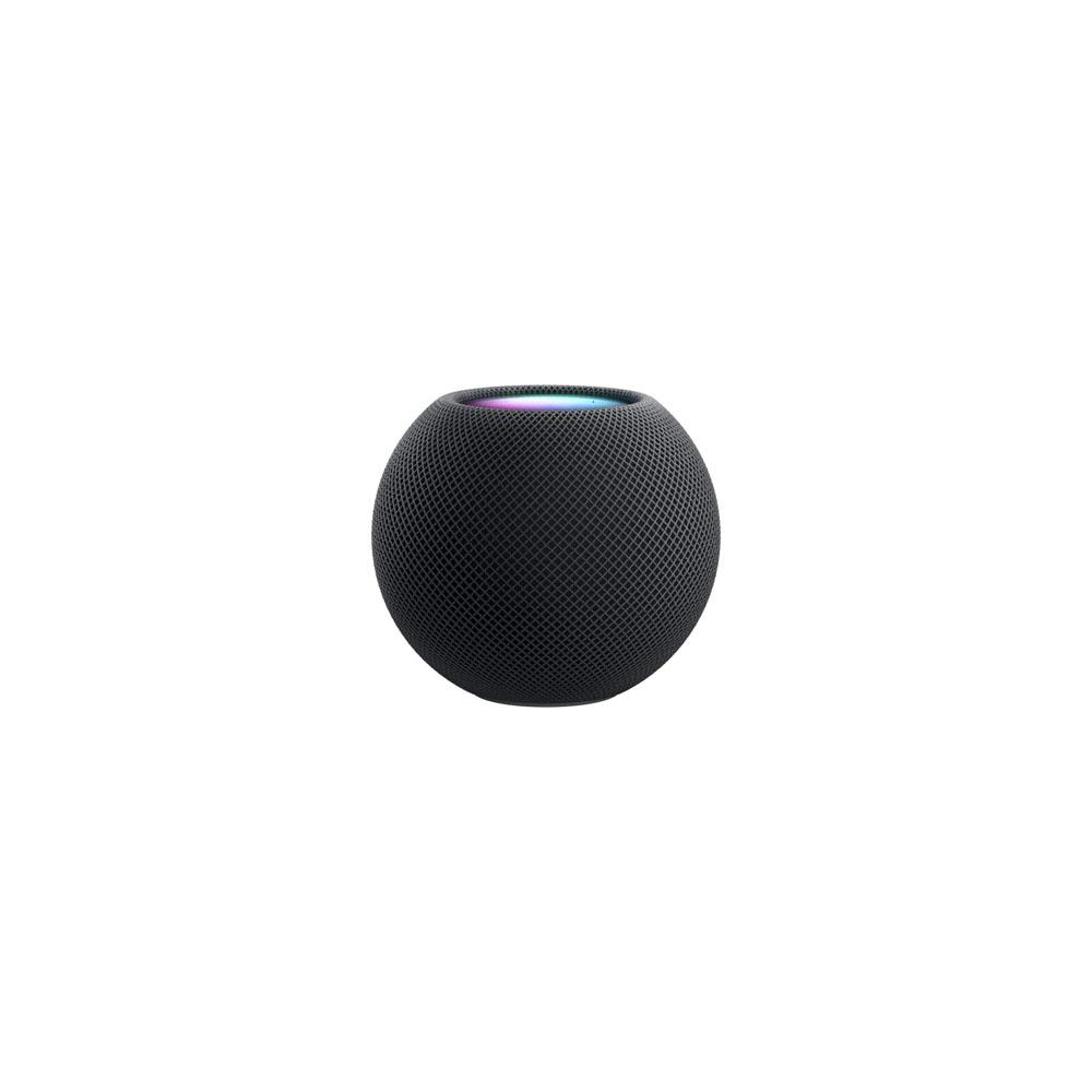 Apple 홈팟 미니 블루투스 스피커, Space Gray, MHY43CH/A