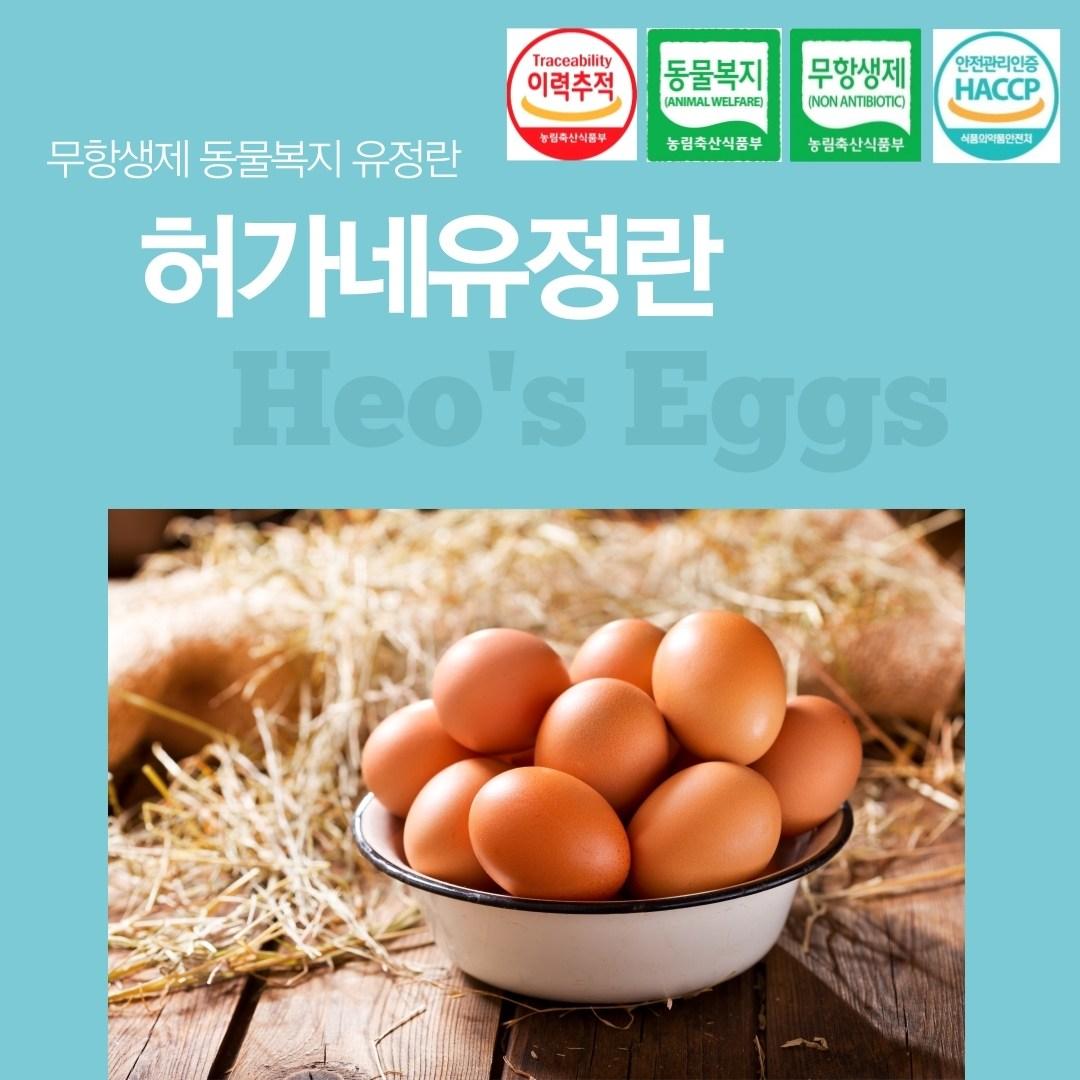 [허가네유정란] 무항생제 동물복지 유정란 계란 달걀 20구, 52g 이상
