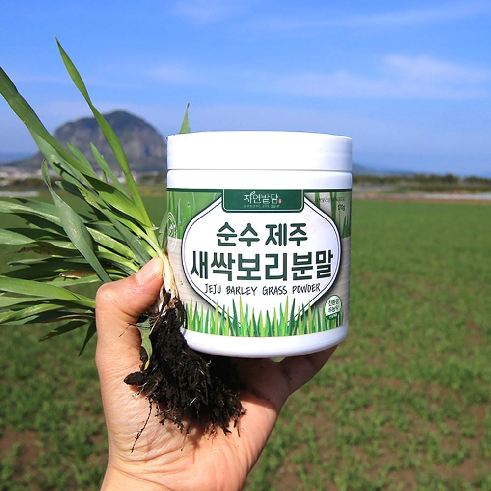 순수 제주 새싹보리 분말 1+1 에어분쇄 친환경 무농약 저온건조 보리어린잎 자연밭담, 2개, 170g