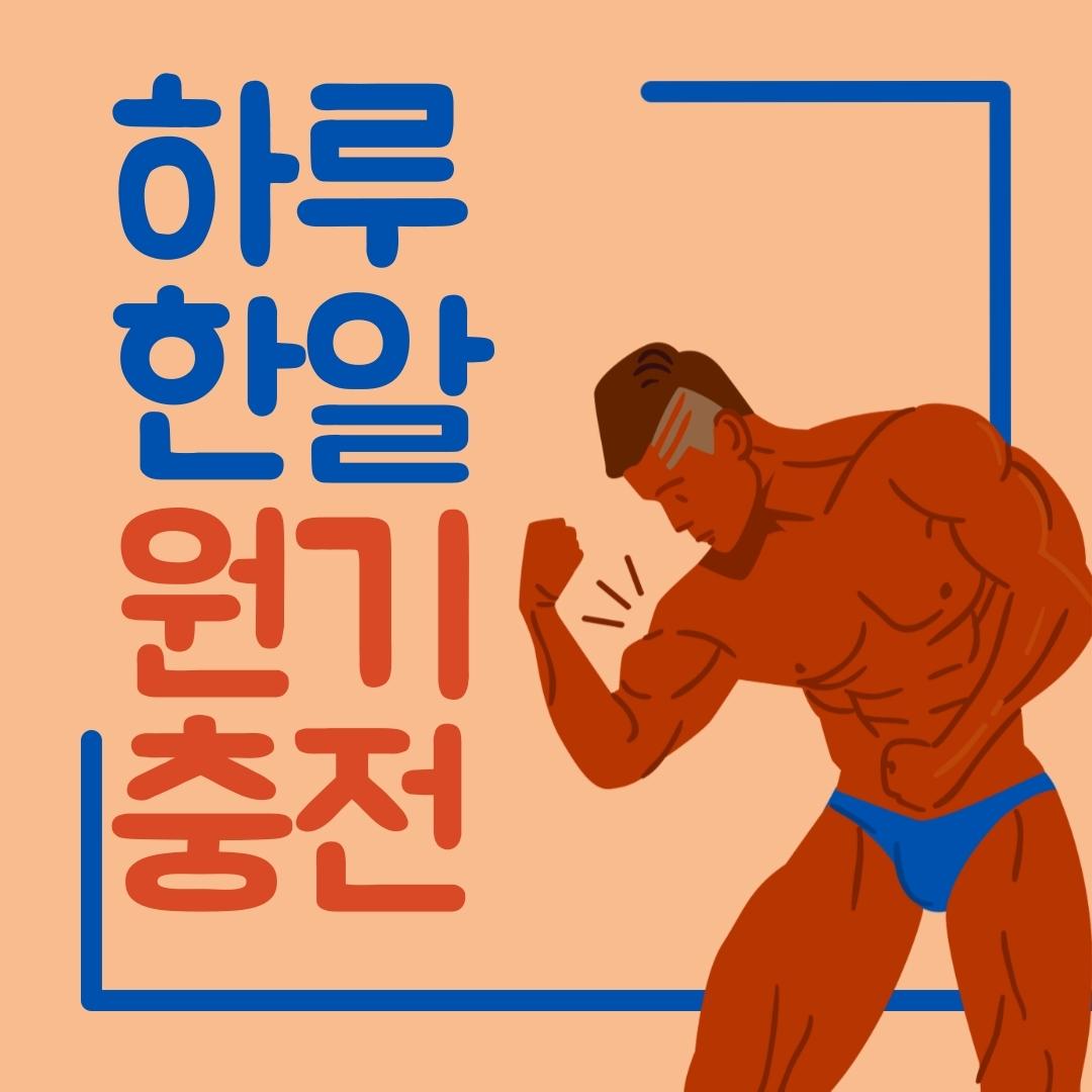 E&R 중년 전립선 전립선약 영양제 쏘팔매토 쏘팔메토 3개월분, 1개