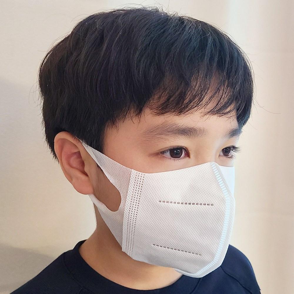 DAFI 정품 어린이 3중필터 입체 호랑이 마스크 30매 S-M, 30매입, 1개