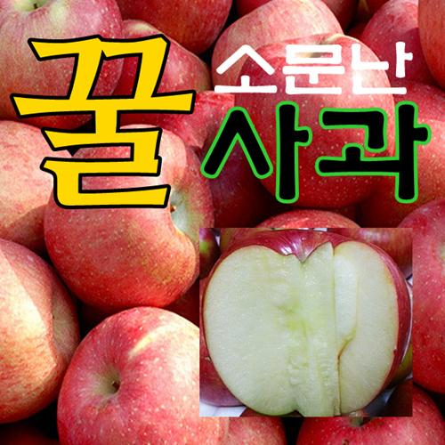 [산지직송] 고당도 꿀사과 맛있는 사과 특가~, 1박스, 08.부사 가정용흠과 중과 10kg (32과내외)