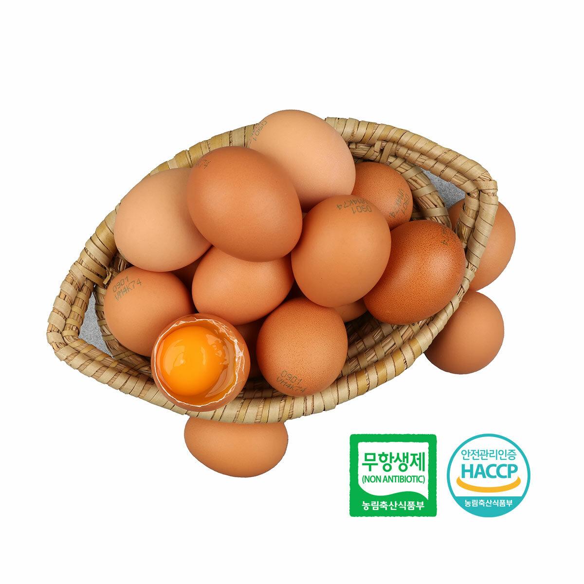 [알부자집] 친환경 무항생제 계란 대란 60구(30구X2판), 60구, 상세설명참조