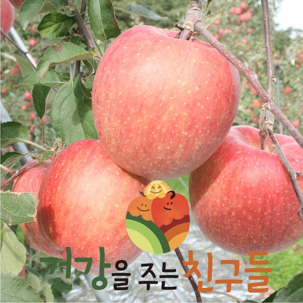 건주친 산지직송 사과 경북산 빨간 사과8kg, 1박스, 사과(흠과)8kg소과40~48과내외(포장재포함)