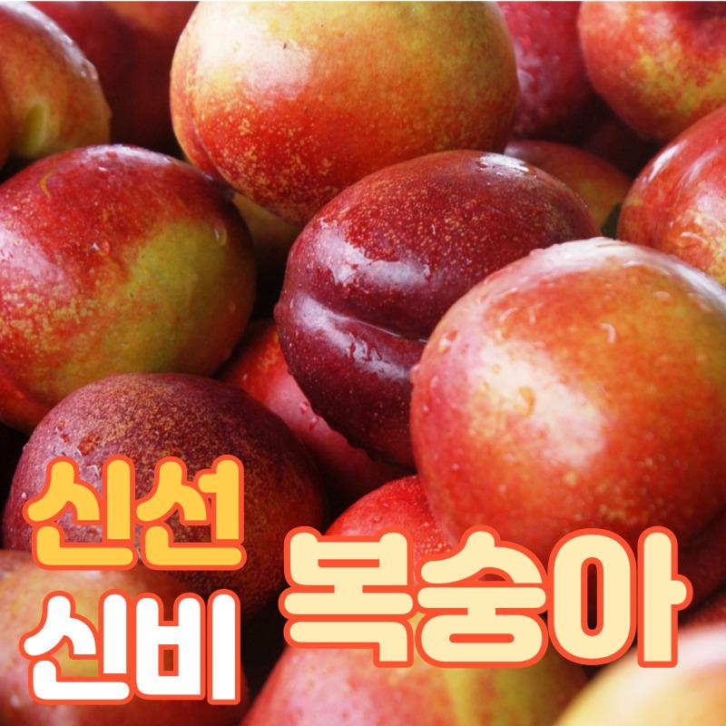 경북 신비복숭아 신선복숭아 새콤달콤 최고의 맛, 신비 복숭아-2kg(17~28과)