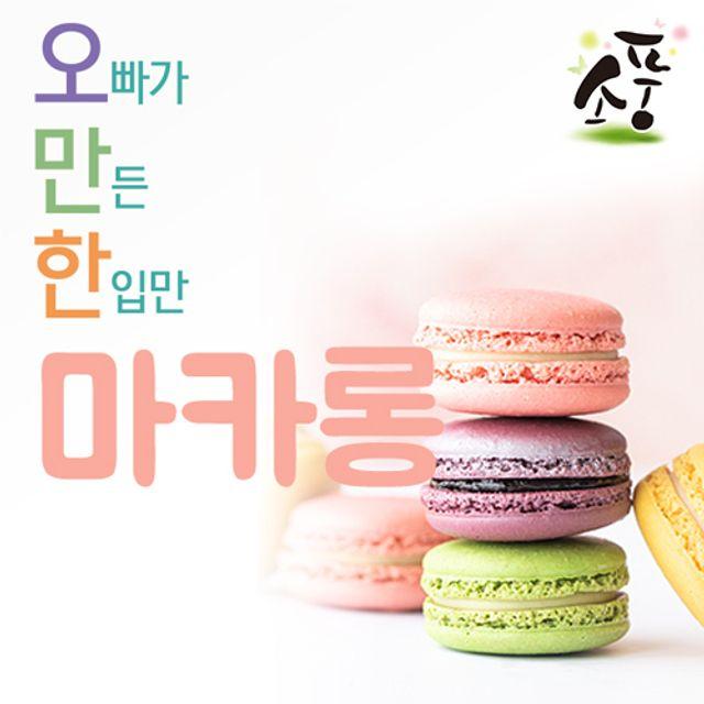 소풍 오만한 마카롱 5개 세트 / 쫀득한 수제 마카롱마카롱 수제 빵 쿠키 케이크 간식 뚱마카롱 프리미엄 수, 호랑이 1