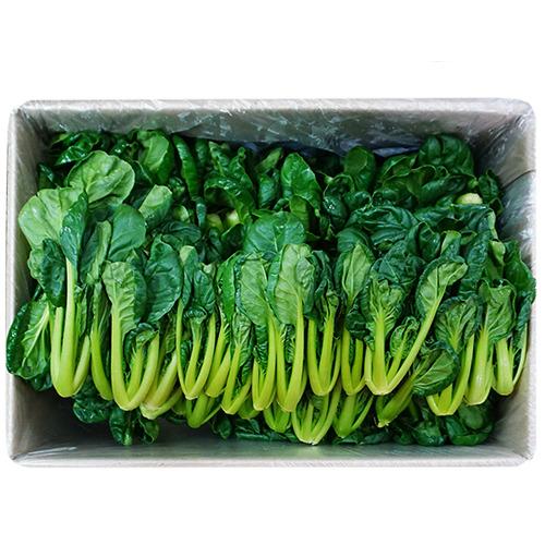 비타민 박스판매 1.8kg~2kg 도매가격 가락시장 직송, 비타민 1박스