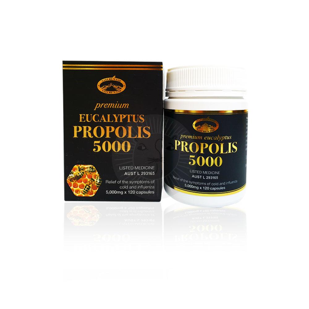 면역력높이는 프리미엄 호주 프로폴리스 5000 120정 비염에좋은영양제 5000 120정
