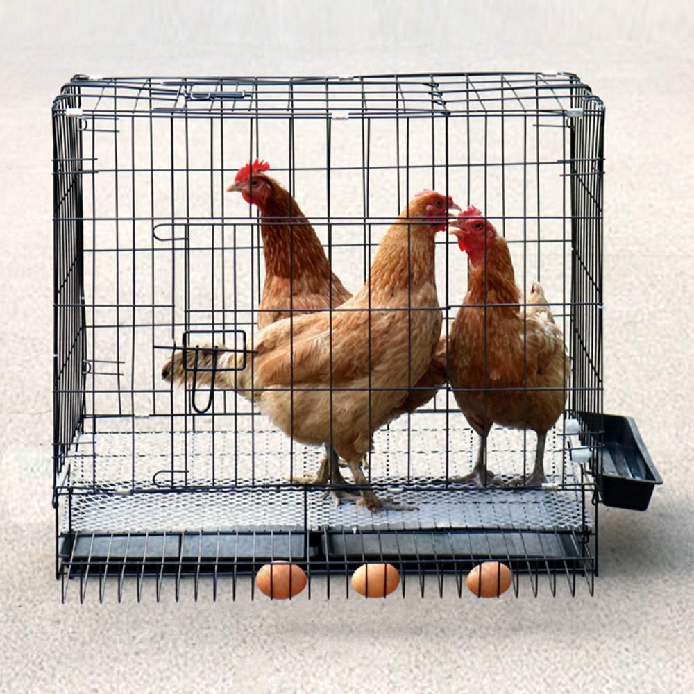 SR 튼튼한 중형 대형 닭장 철장 철망 만들기 물통 모이통 사료통, 블랙(중형)