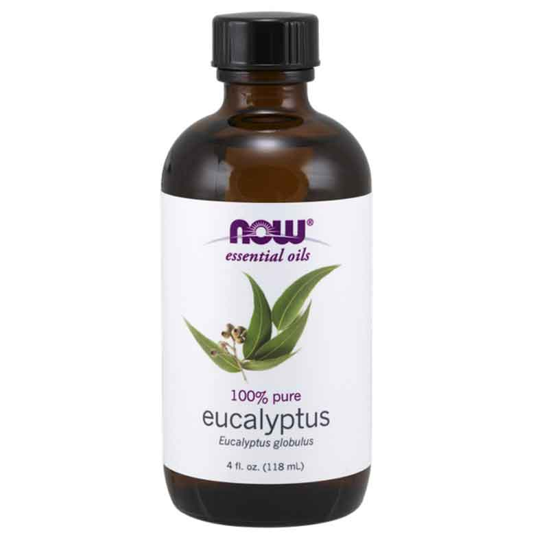 Now Foods 100% Pure 유칼립투스 에센셜 오일, 118ml, 1개
