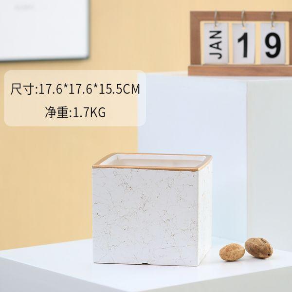 다육 식물 화분 원숭이꼬리선인장 소형 미니 거실 집안 다육이 키우기 좁은현관인테리어 집들이선물, K (POP 5839338996)