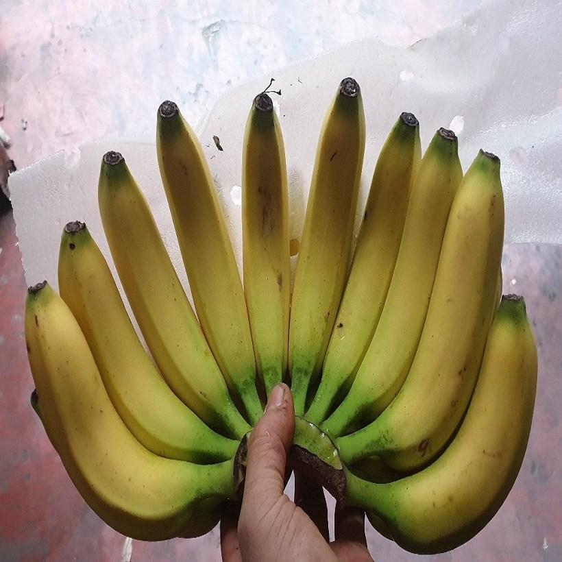 가람상점 일반 델몬트 고당도 바나나 13kg 한박스, 일반 바나나 6수(유니,자연왕국,만나기타등등) 13kg, 1박스