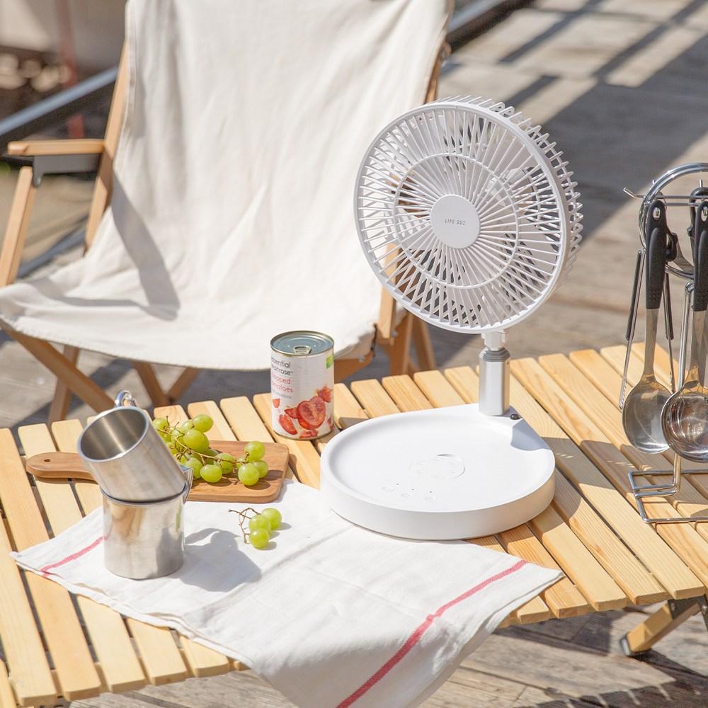라이프썸 무선 접이식 BLDC 선풍기(LFS-HA40)+전용 파우치 캠핑용 휴대용 탁상용 스탠드형 저소음 리모콘 선풍기, 화이트 (POP 5470447430)