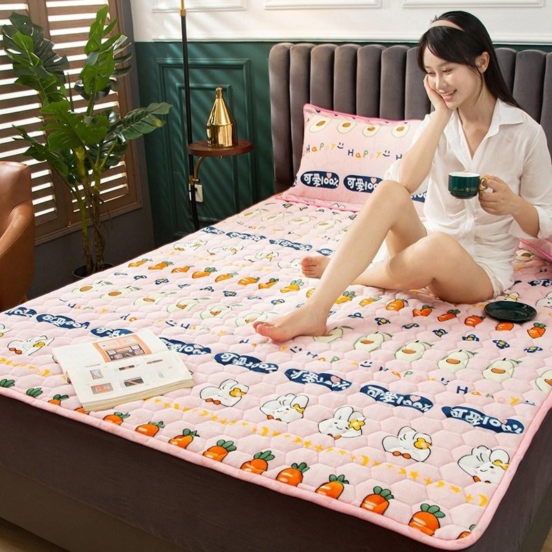 토퍼 템퍼 매트리스 침구 기타 겨울 기모 쿠션 학생 기숙사 싱글 담요 침대, AN_0.9 x 2m