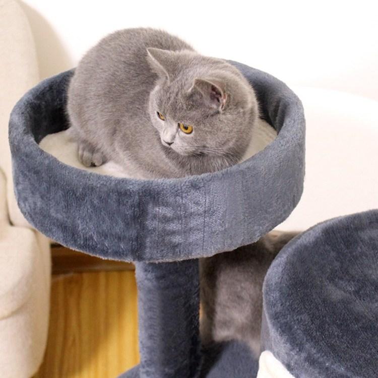 미래물 고양이 인형 삼줄 널빤지 소형 나무 일체형 캣타워 점프대ZZW, 1개, 브라운A1