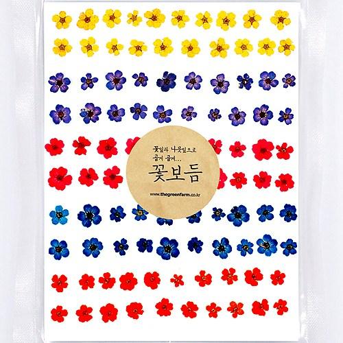 그린팜네이처 꽃보듬 압화-조팝 혼합팩(100송이)