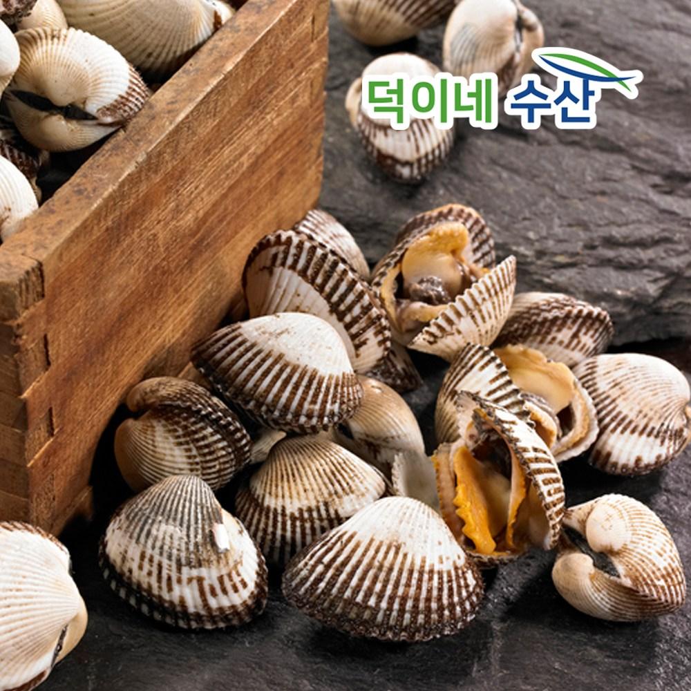 덕이네수산몰 100% 남해안 국내산 새 꼬막 2K 상품 1일특가, 1개