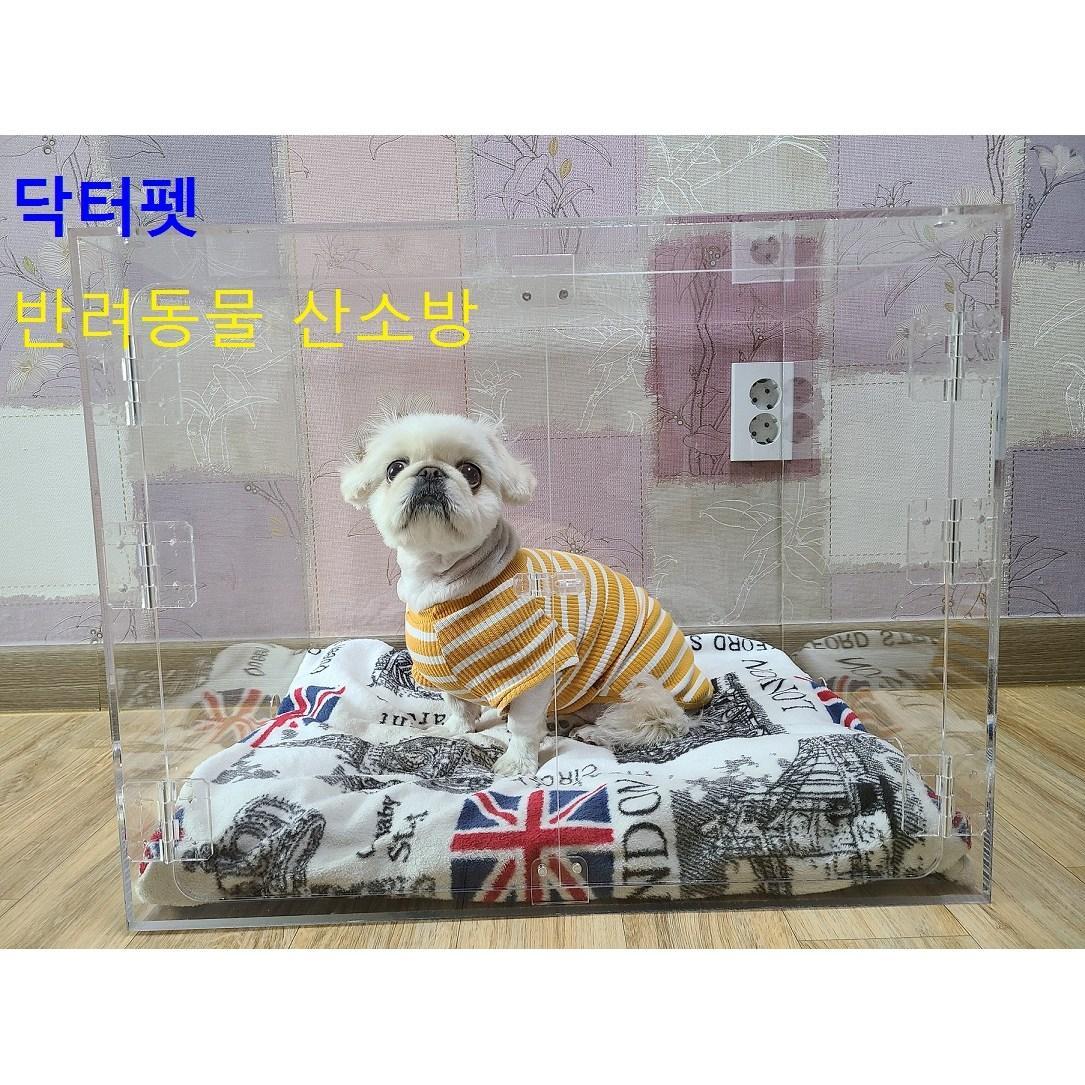닥터 펫 (단품구매) 반려동물산소방 아크릴산소방 단품 / 강아지 고양이 산소방 (POP 5029954710)