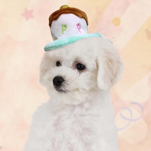 [바보사랑]펫 미니 생일케익 머리띠