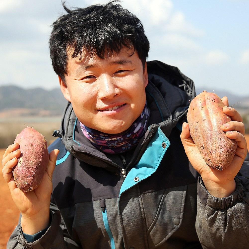 삿갓유통 꿀이 좔좔 잘생긴 해남 세척 꿀고구마, 1박스, 중 3kg