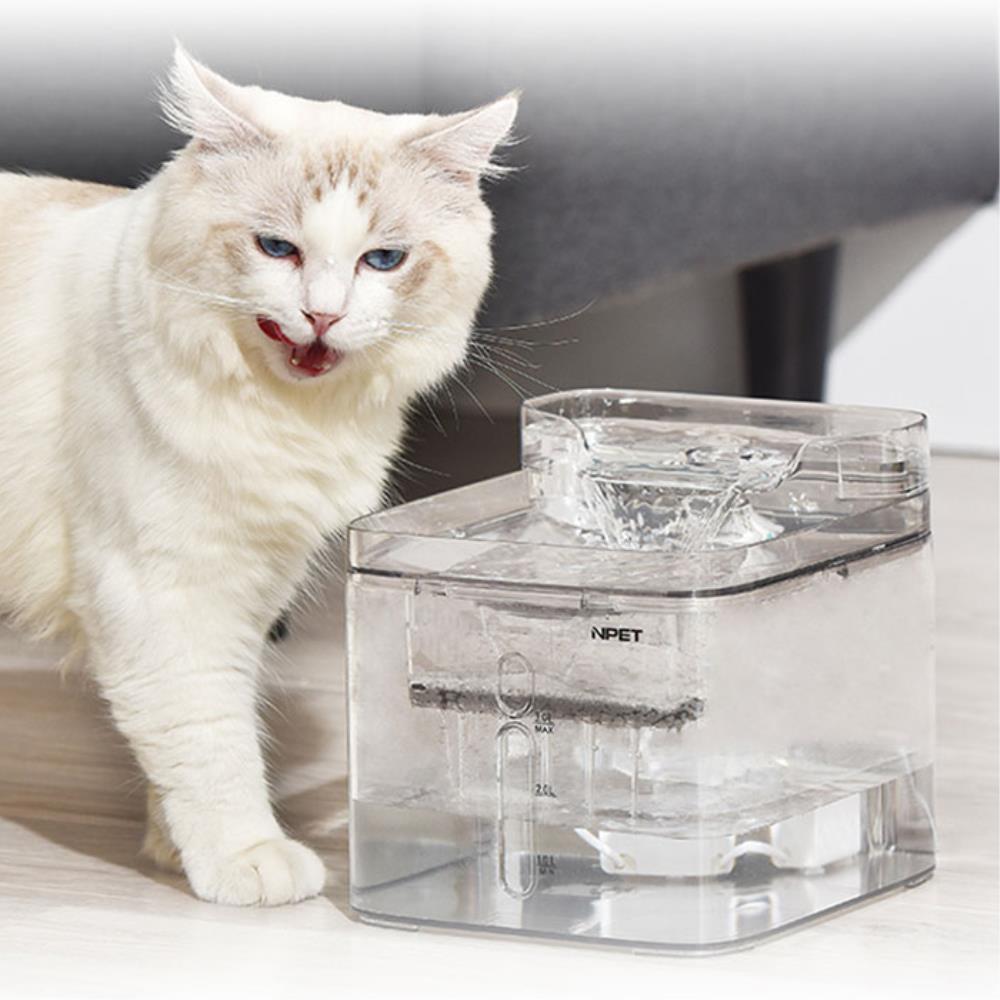 흐르는 물먹이기 고양이 분수정수기 고양이호기심자극