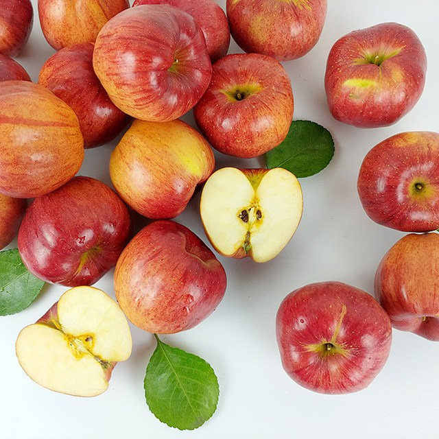 경북 햇 홍로 사과 가정용 5kg, 1박스, 경북 햇 홍로 사과 가정용 5kg 19-21과