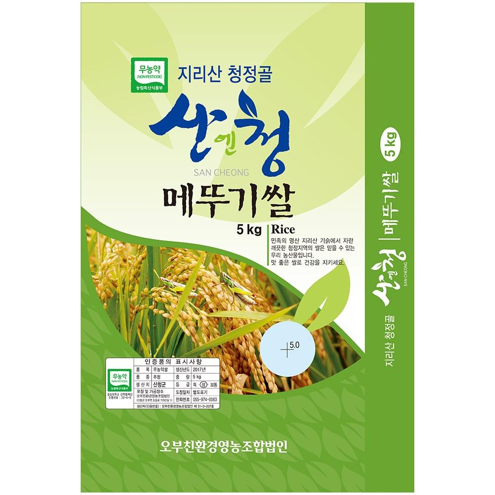산엔청 2020년 햅쌀 산청 지리산 친환경쌀 무농약 메뚜기쌀 오분도미 당일도정, 5KG, 1포