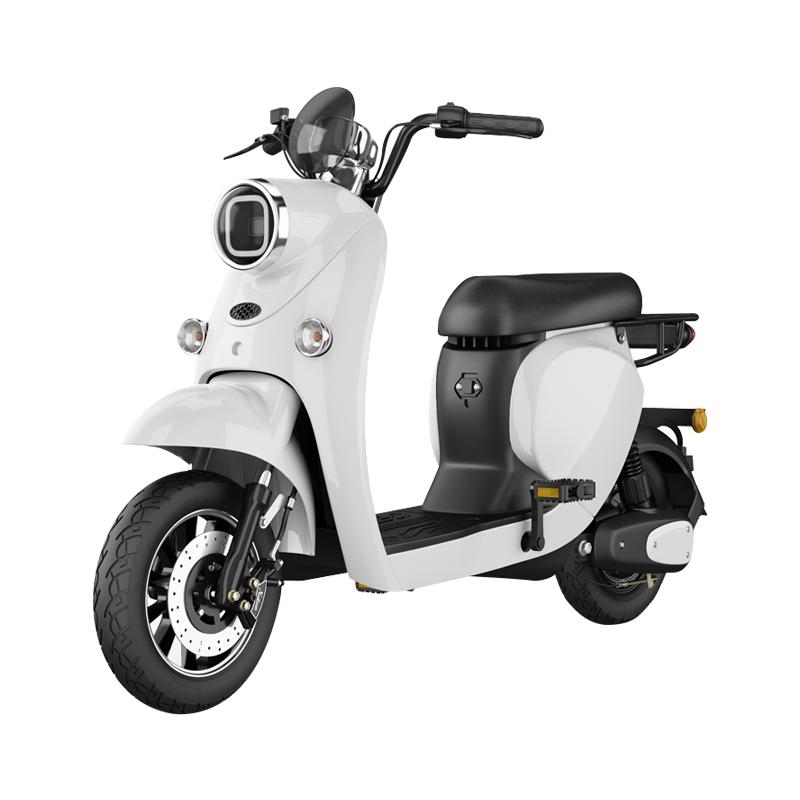 2인용 좌식 전동킥보드 출퇴근용 전기자전거 가성비 고성능 전동자전거 2인승 배달용 가벼운 유아동승 14, 베어 차에는 배터리와 충전기가 포함되어 있지 않습니다., 48V