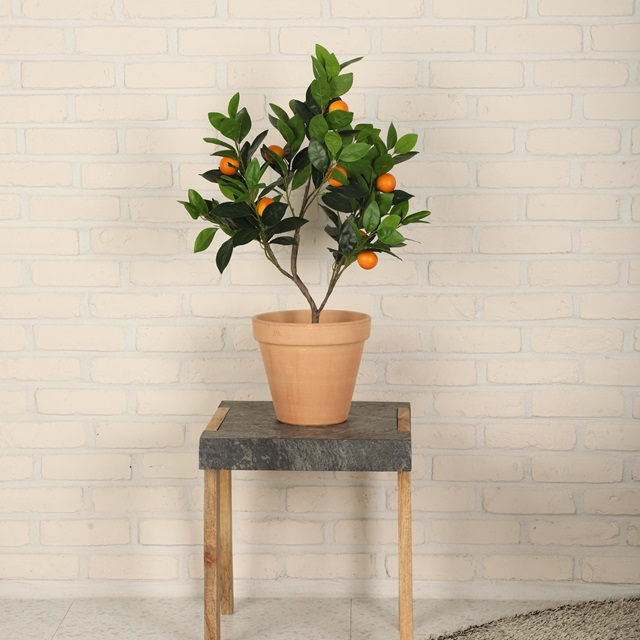 리얼리티 유주나무 낑깡 금귤 인조 나무 인테리어 조화 화분 귤나무, [ 오늘출발 ] 유주나무 조화화분