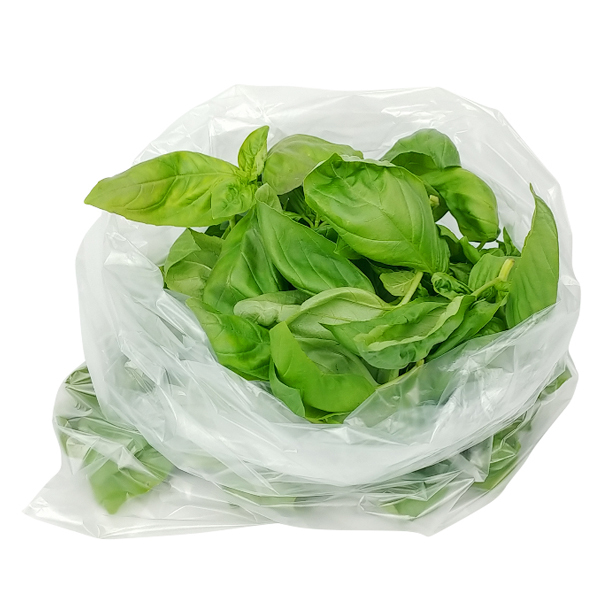 (신선) 생바질 / 바질 잎 / 생잎 100g 국내산 basil, 단일상품