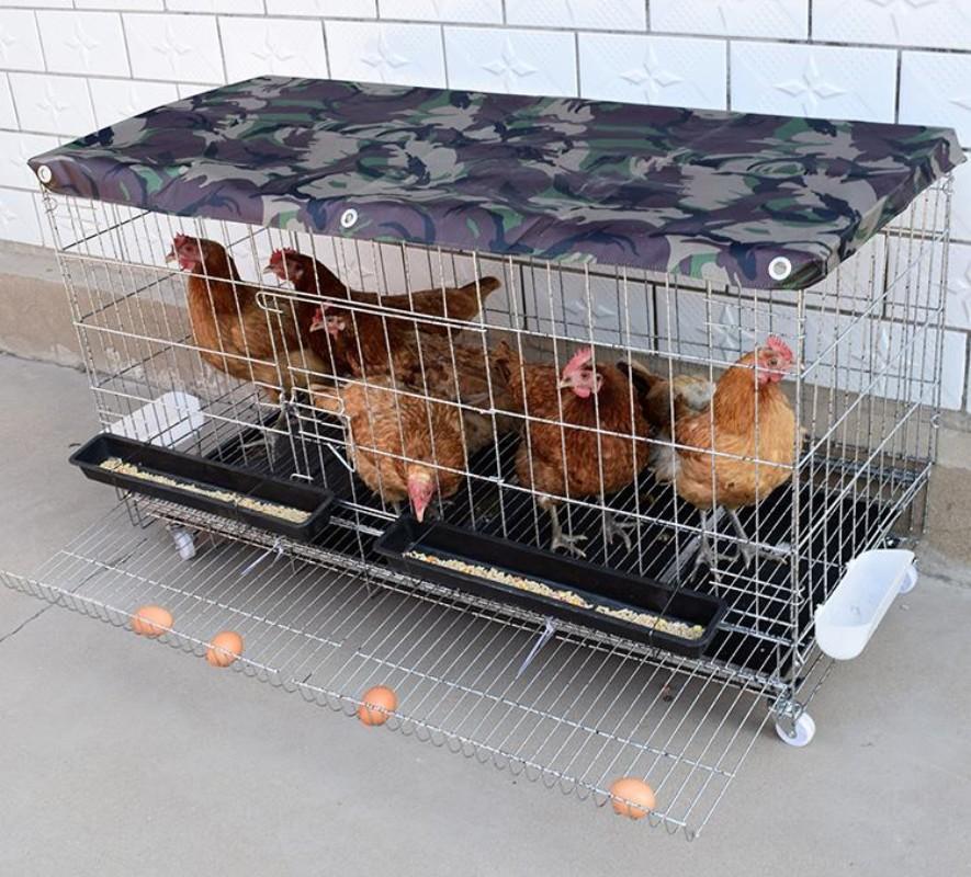 가정용 대형 닭장 발코니 케이지