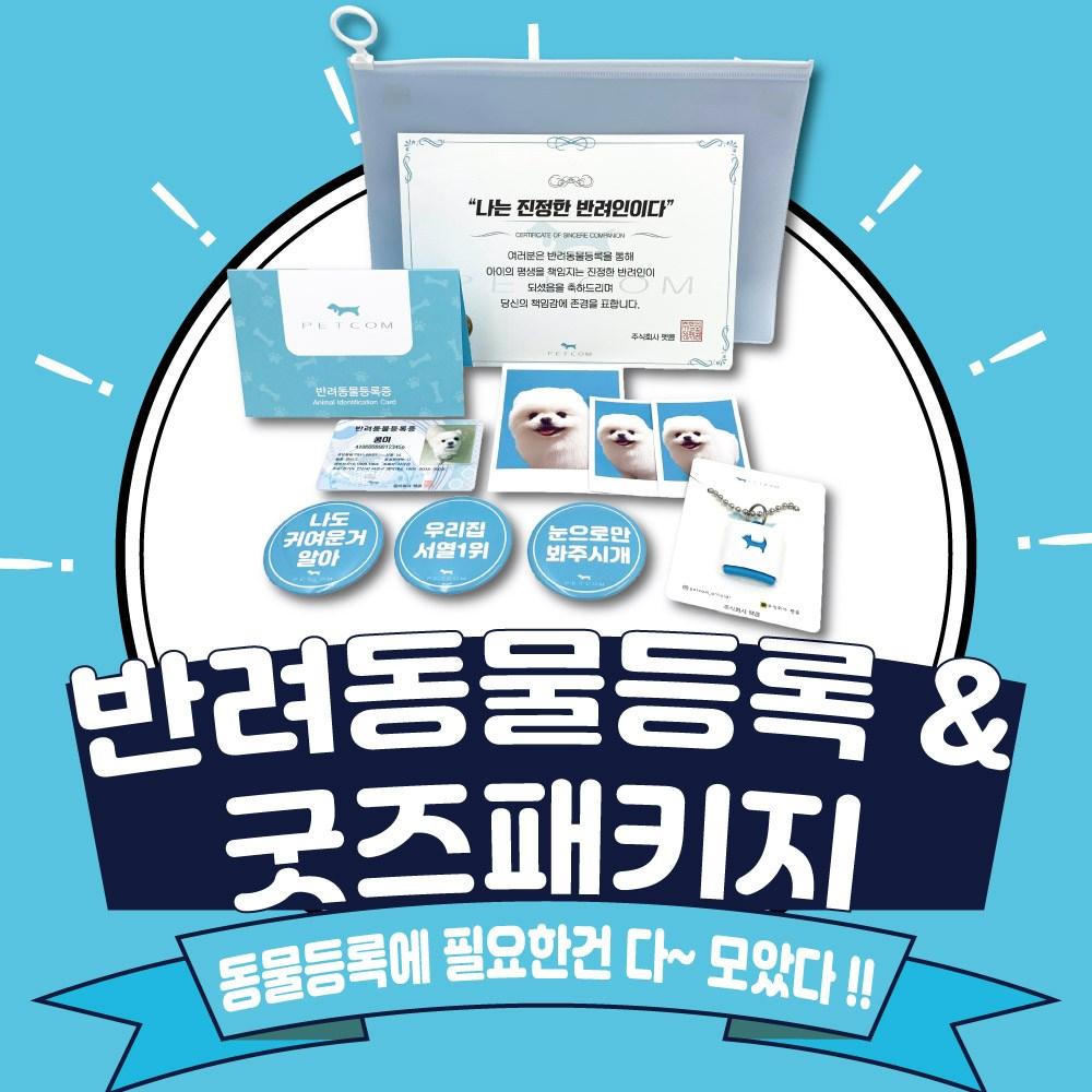펫콤 반려동물등록&굿즈패키지 인식표/이름표, 뼈다귀 골드