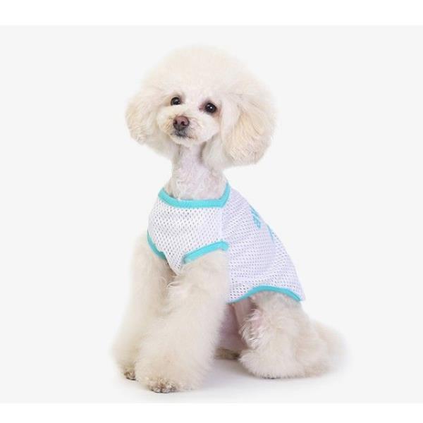 보드미 강아지 티셔츠 어썸 민트 1p 강아지티 hr715, M
