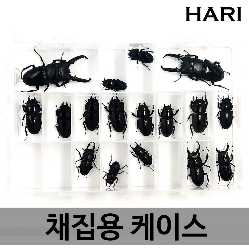 HARI [당발] 채집용 케이스 채집정리함 멀티박스 사슴벌레 장수풍뎅이 곤충, 2개, 채집용 케이스 (대형/미타공)