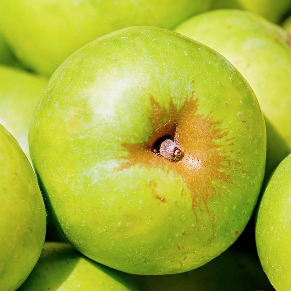 안동 제철 햇아오리 사과 가정용 흠과 꼬마사과 5kg 10kg, 1박스