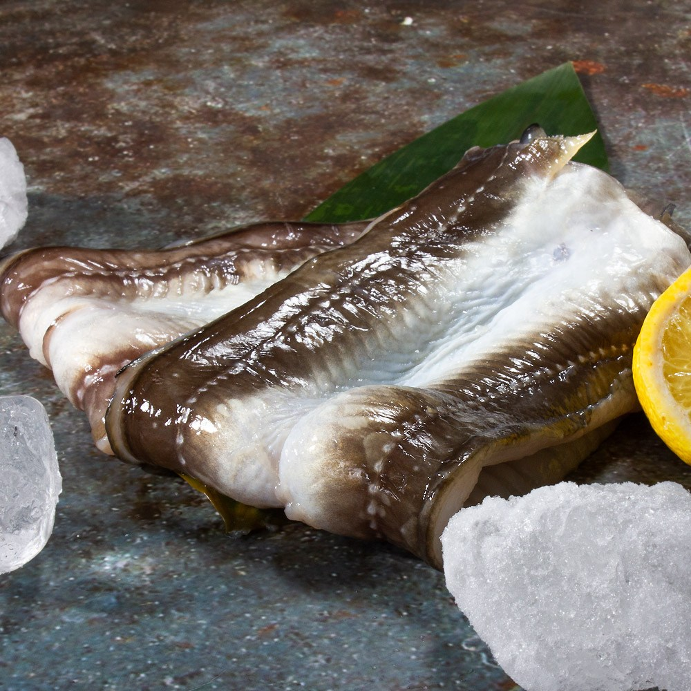 통영베네치아수산 프리미엄 통영 자연산 바다장어 아나고 붕장어 (중)구이용 6~7미 장어, 1개, 장어구이 (중 6~7미)