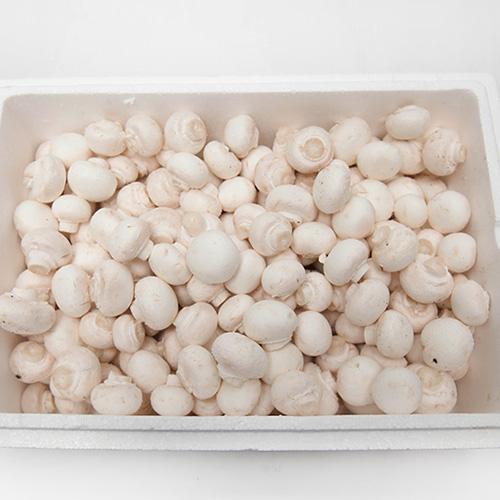 [프레시팜] 버섯류 양송이 버섯 특품 상품 2kg 1박스, 상
