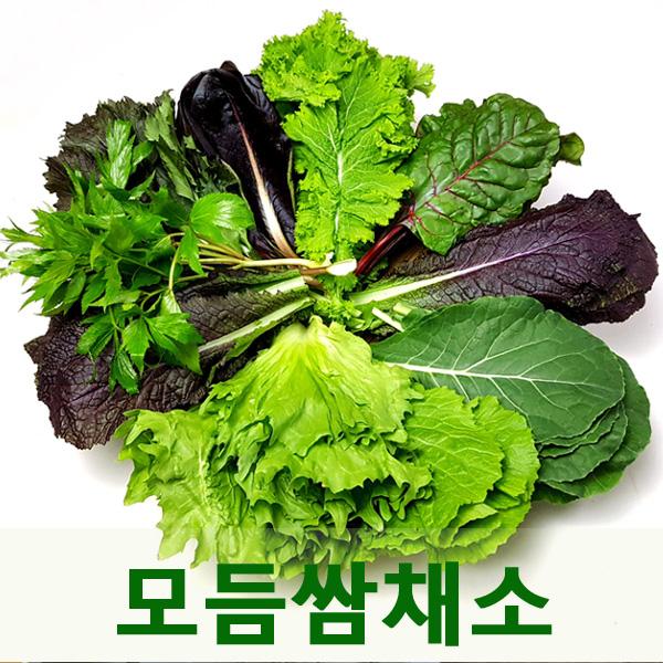 싱싱한 모듬쌈채소2kg 7-9종채소모음 웰빙푸드, 모듬쌈채소2kg내외