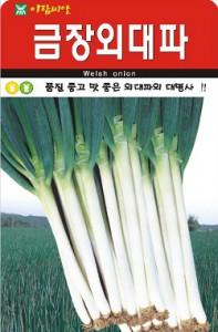 채소씨앗) 금장외대파 1000립 최적인 양과 질_양대파씨앗