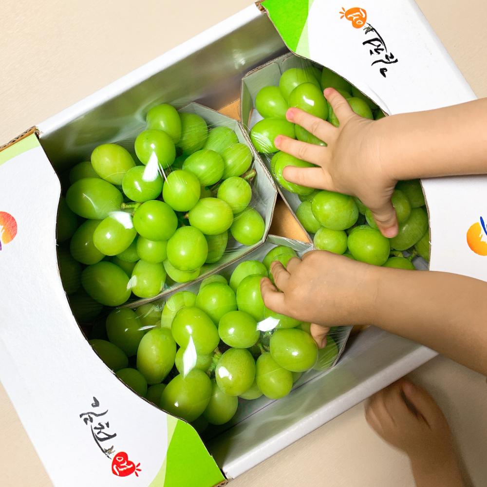 [방씨아들] 특등품 초달달 샤인머스켓, 1box, 특등품(2수/1kg내외)
