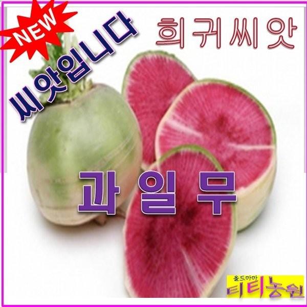 SP1/희귀씨앗/과일무 (100립) / 붉은 수박무, 상세페이지 참조