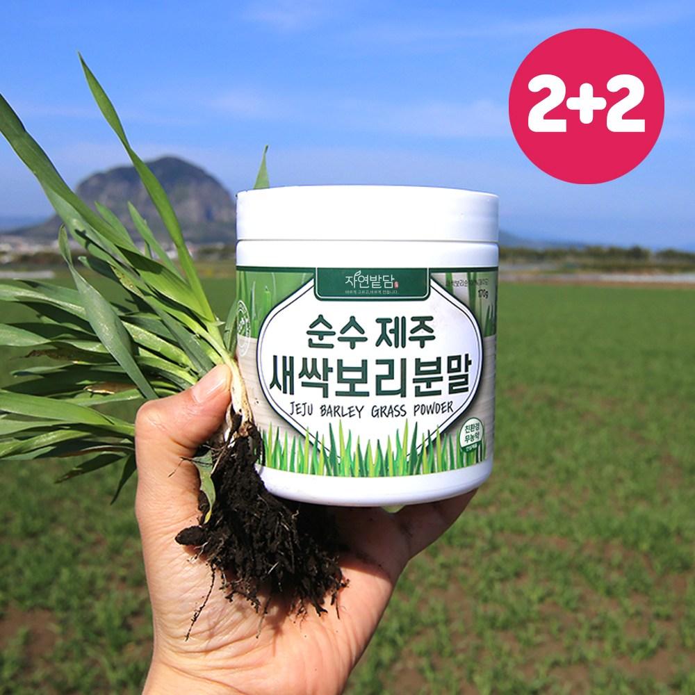 순수 제주 새싹보리 분말 1+1 에어분쇄 친환경 무농약 저온건조 보리어린잎 자연밭담, 4개, 170g