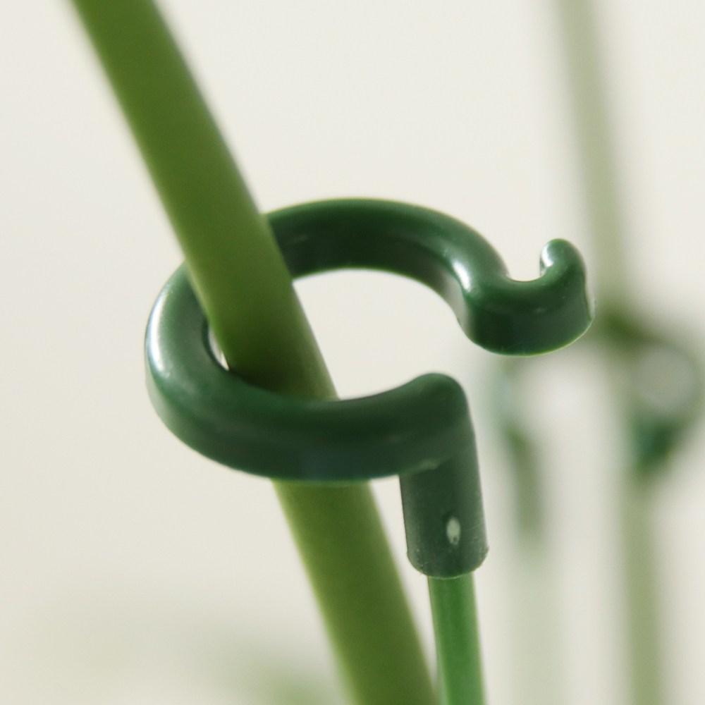 식물지지대 화초 화분 방울토마토 꽃 지주대, 오링 식물지지대, 18cm (POP 5789823290)