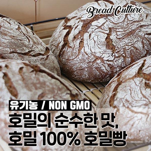 브레드컬쳐 호밀빵 100% (유기농 통호밀 비건빵 당뇨 암 다이어트), 1개